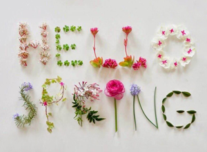 Hello to Spring...